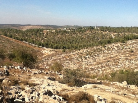 http://www.vice.com/en_uk/read/couch-surfing-in-the-holy-land Stolen Land Gush Etzion